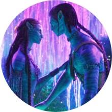 Masculin Féminin – Connexion